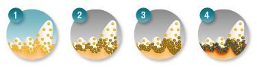 Стадии образования зубного камня