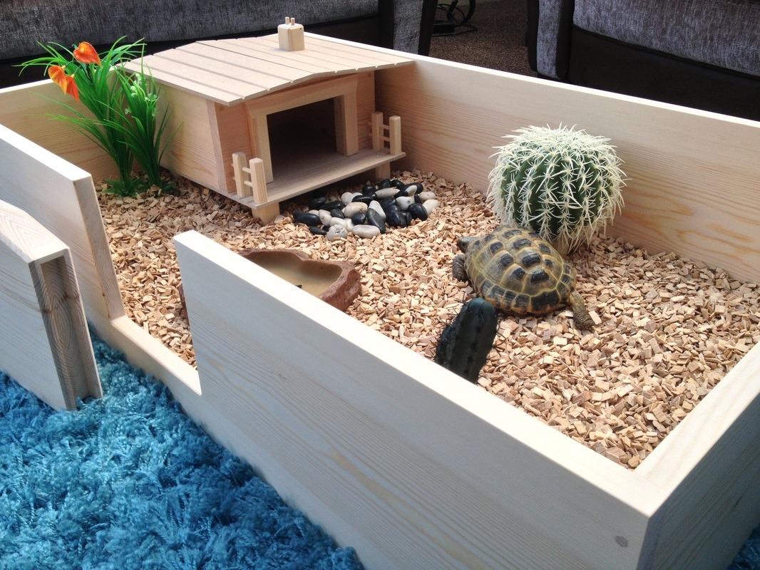 Как сделать дом для черепахи своими руками