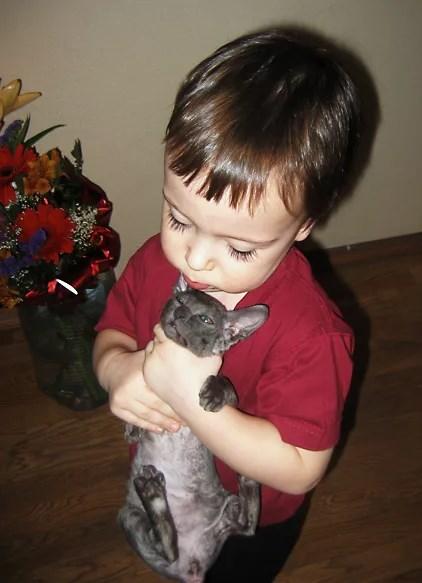 ребенок мучает животное