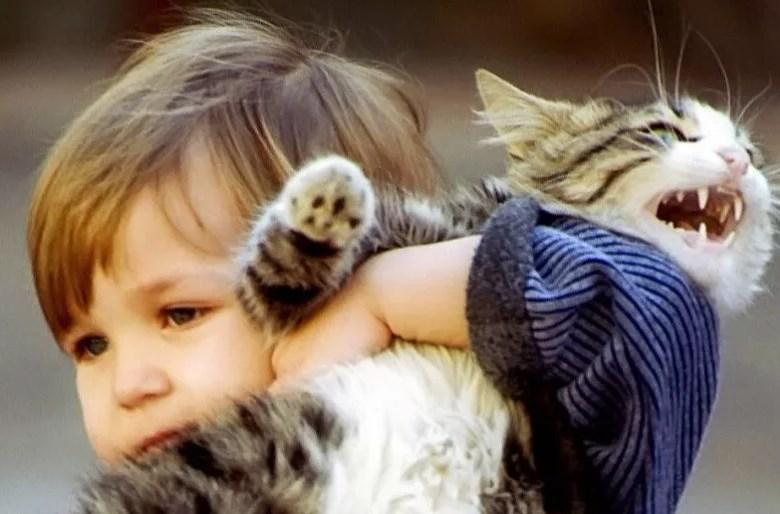ребенок жесток с животными