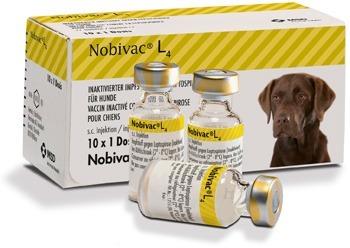 вакцина нобивак