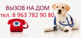 vet_home
